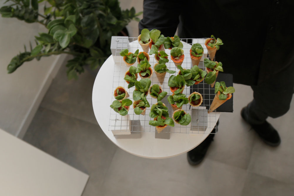 catering-design-santo-domingo-food-and-event