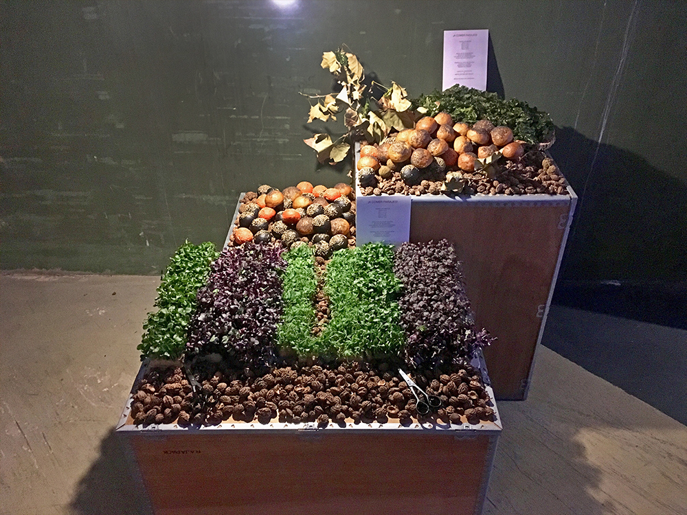 food-design-edible-landscape-installation-foodandevent.px