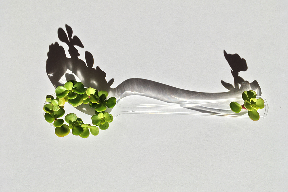 Growing Spoons_by_foodandevent_for_foodture_Spoon_exhibition